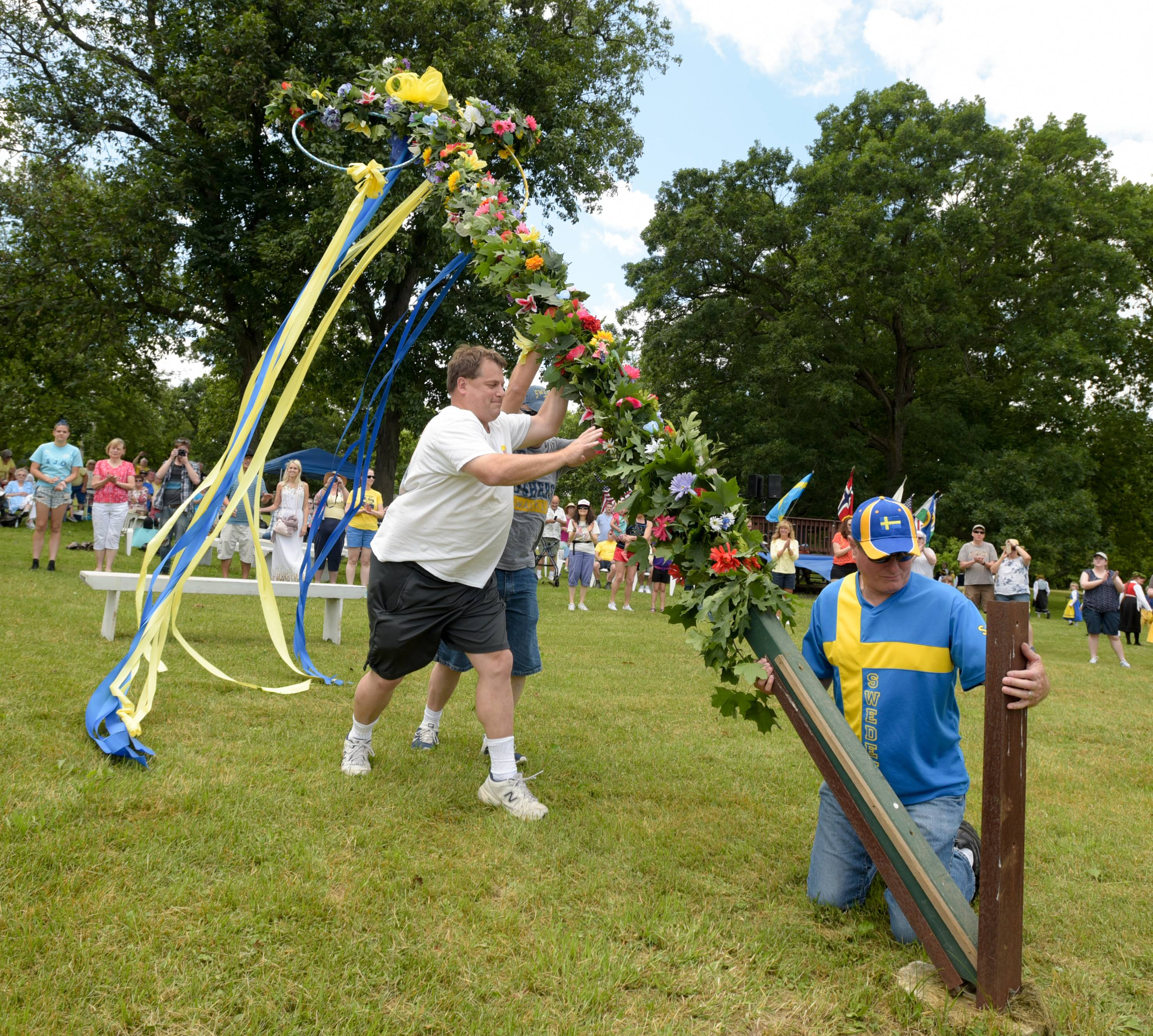 The Maypole is raised Sunday during the 107th Swedish Day Midsummer Festival at Good Templar Park in Geneva.