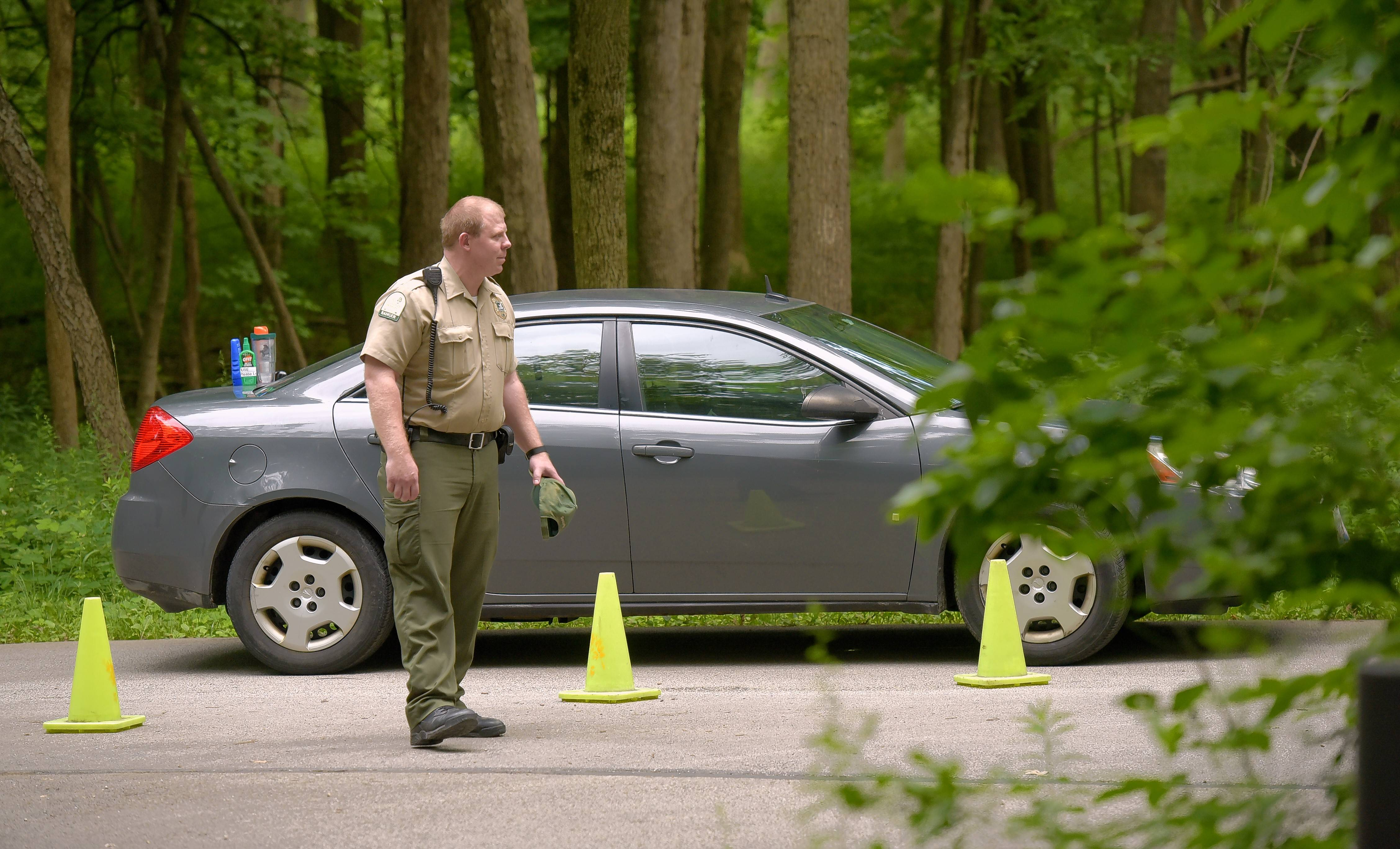 A Morton Arboretum ranger blocks traffic earlier this week after a body was found in a burned-out car on the far east side of the outdoor museum.