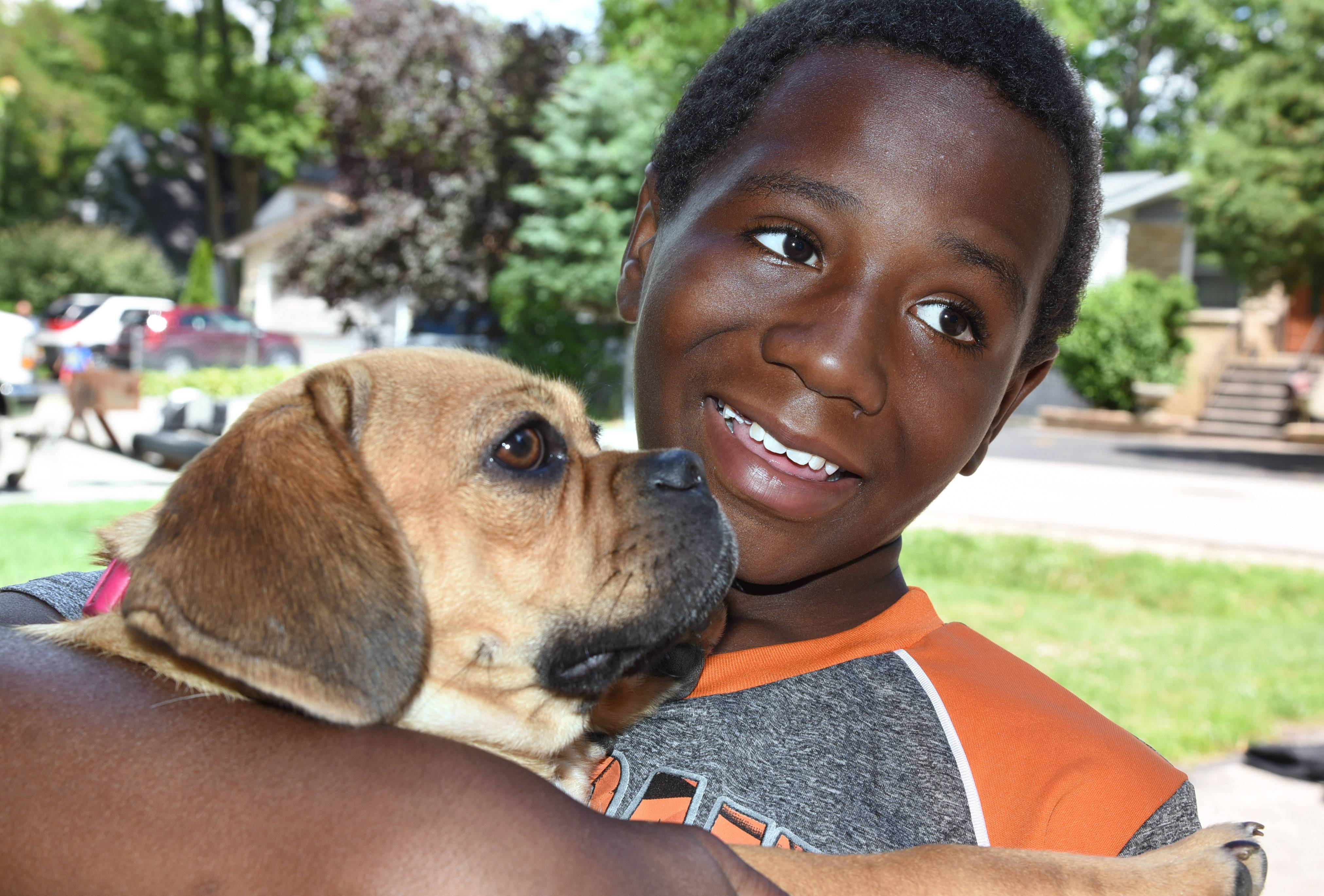 Clarence Jackson, 9, of Round Lake Park, was happy to be reunited Monday with the family Puggle, Misty. The dog went missing Sunday afternoon and was later thrown from a moving SUV.