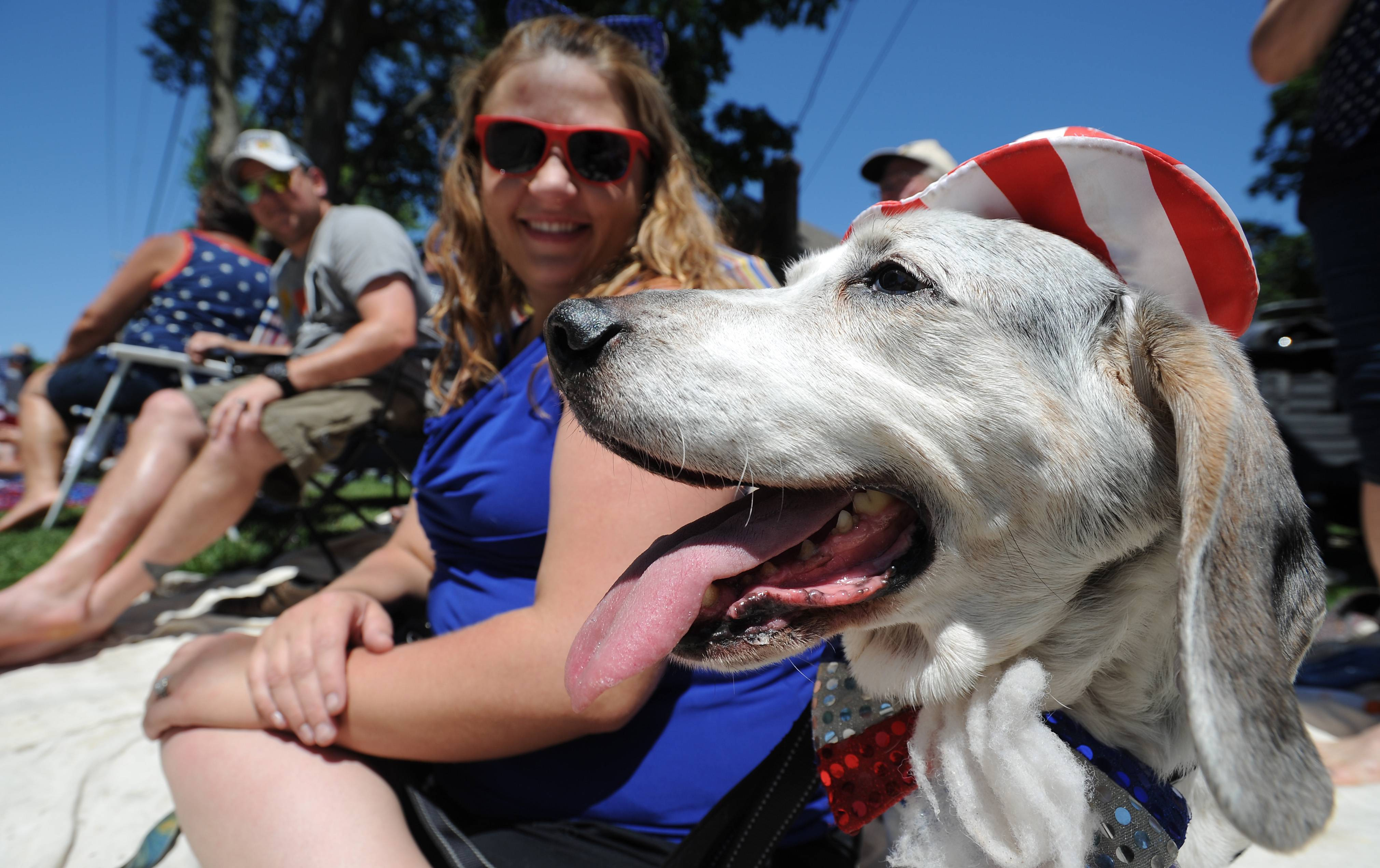 Murphy, a basset/beagle mix, has a tongue-wagging good time as owner Lindsay Schubel Nagle looks on at Palatine's annual Hometown Fest Fourth of July parade.