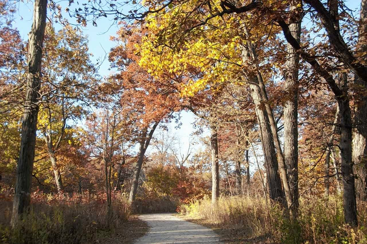 This trail in Greene Valley Forest Preserve in DuPage County will link with Whalon Lake in Will County thanks to a partnership between the forest preserve districts in the two counties.