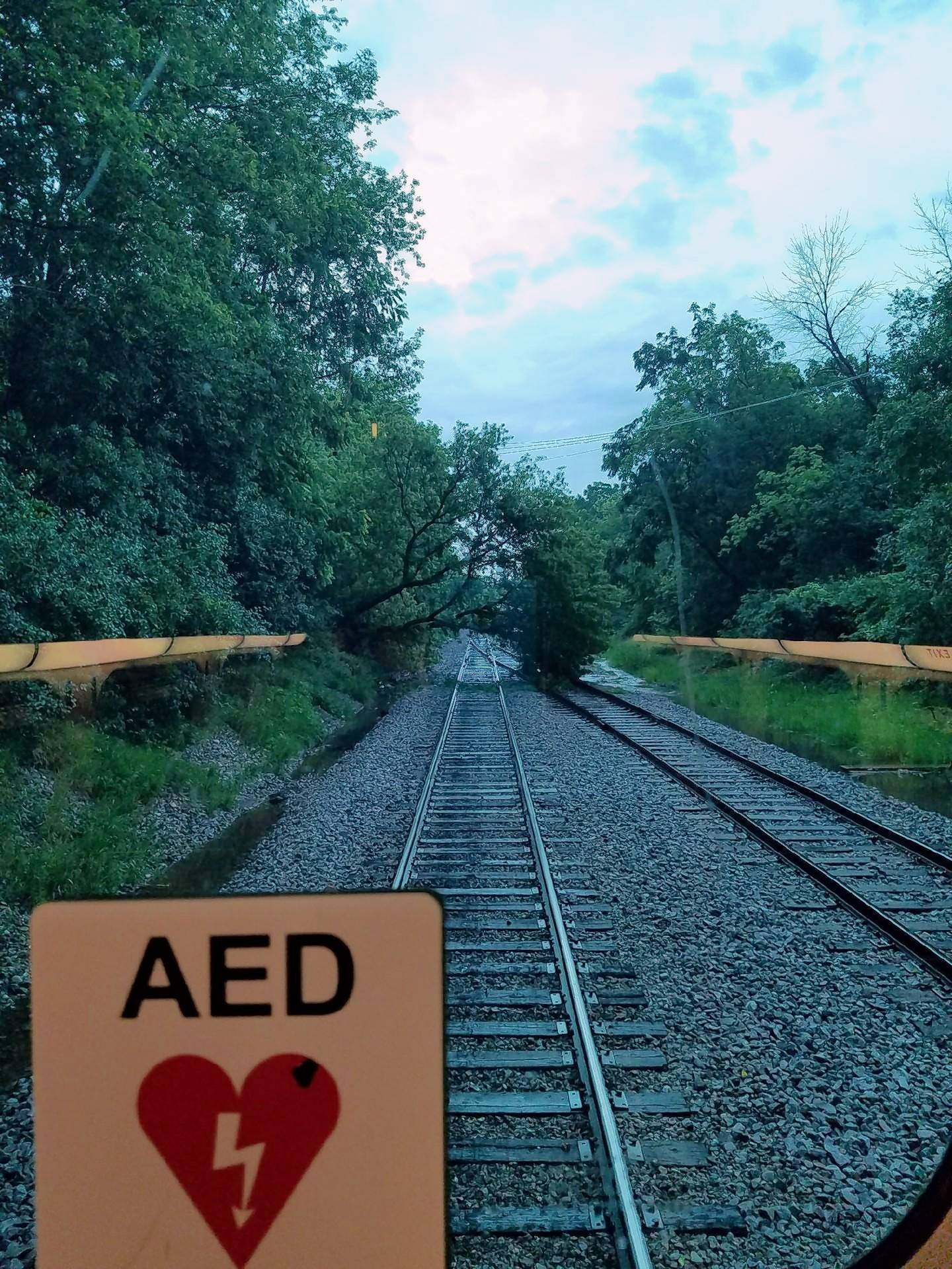 Metra resuming evening service in Lake County after tree fell on tracks