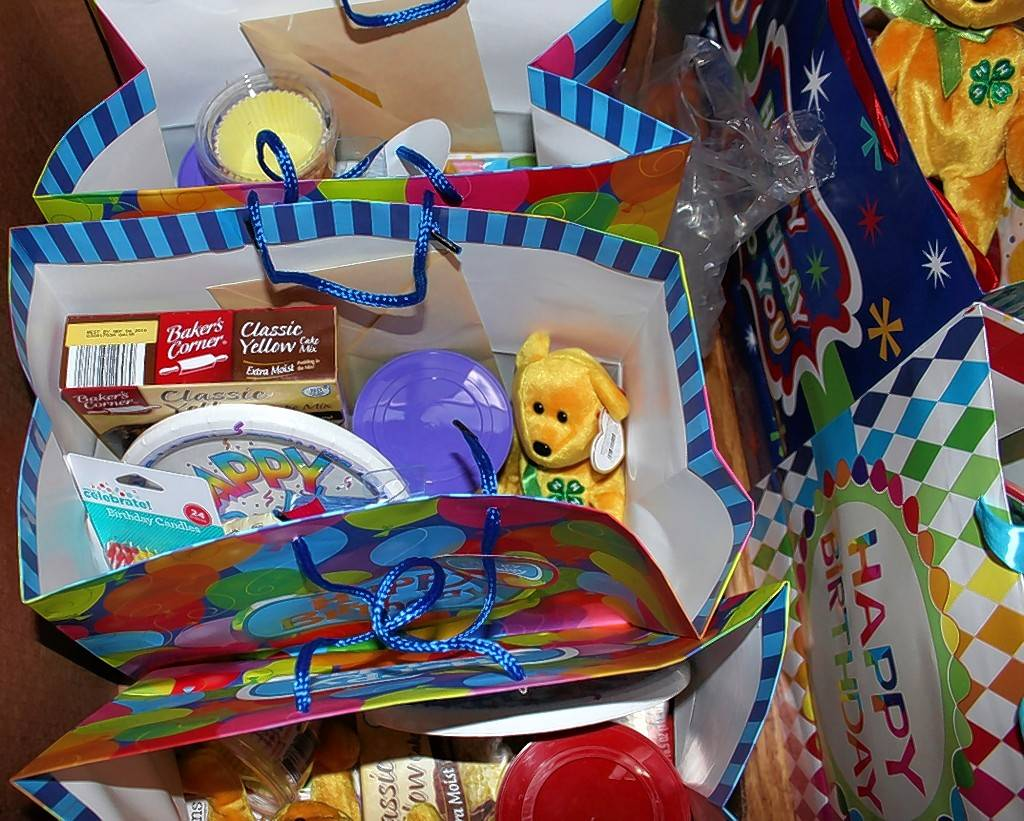 More than 200 birthday bags created by local 4-H clubs on the way to community families in need.