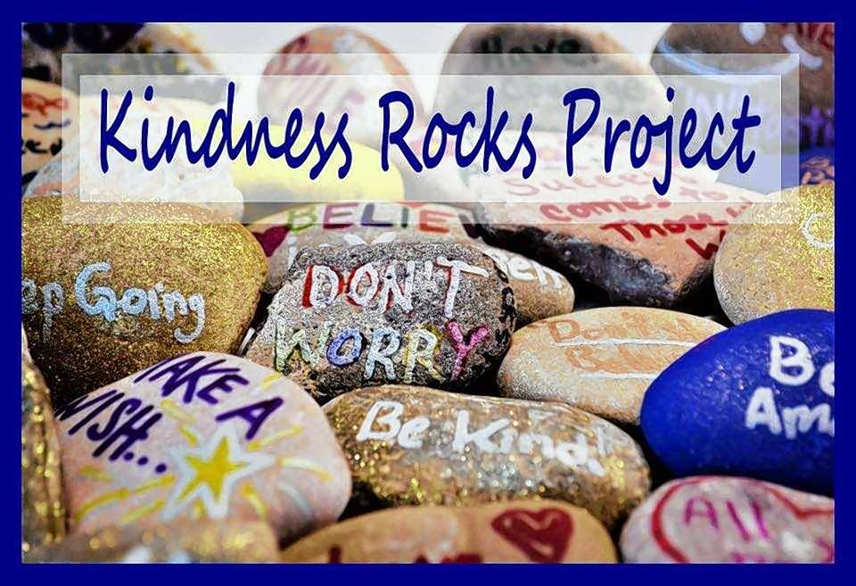 Kindness Rocks Naperville, a citywide hide-and-seek