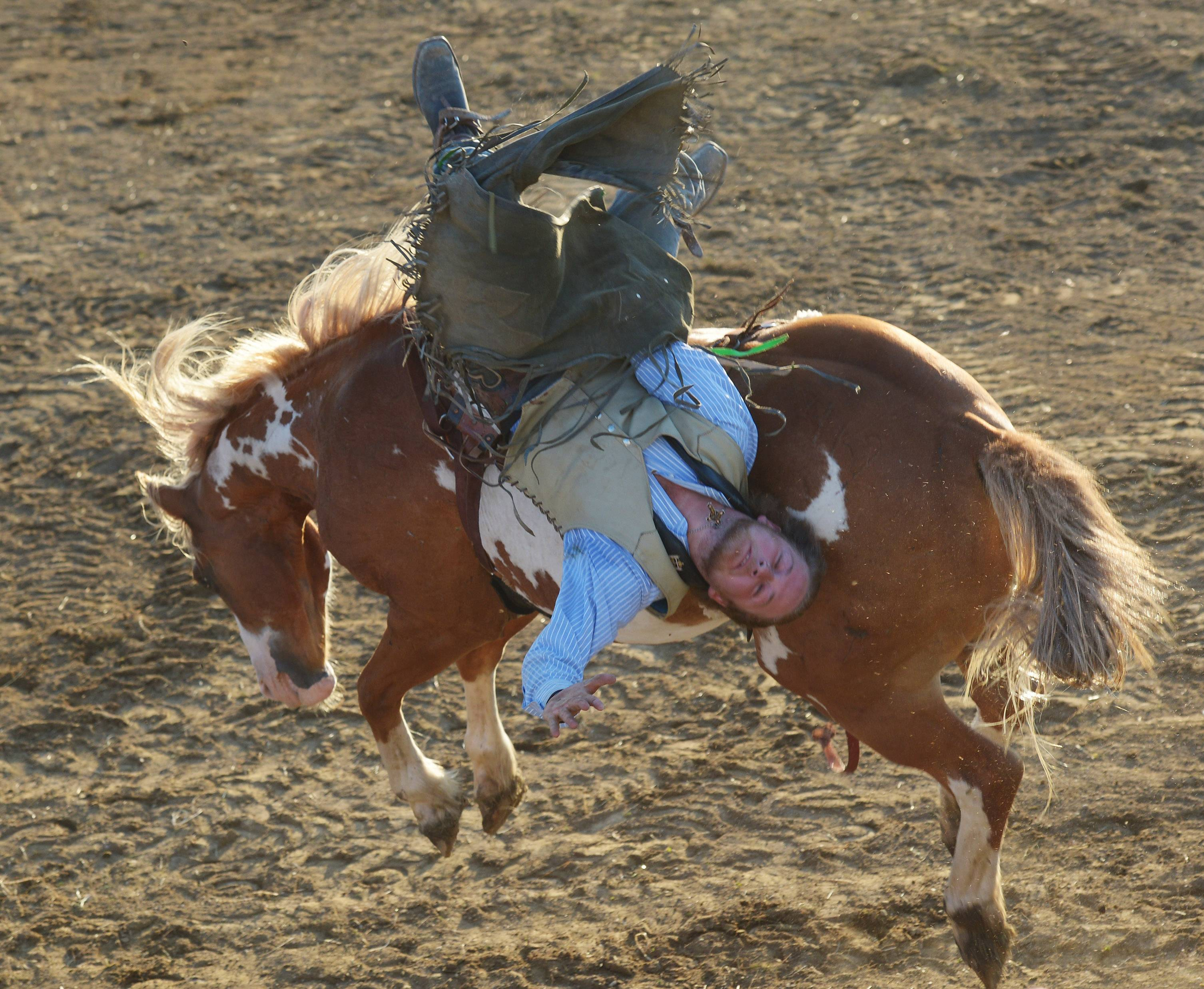 Tim Murphy competes in bareback riding during the 54th annual IPRA Championship rodeo Saturday in Wauconda.