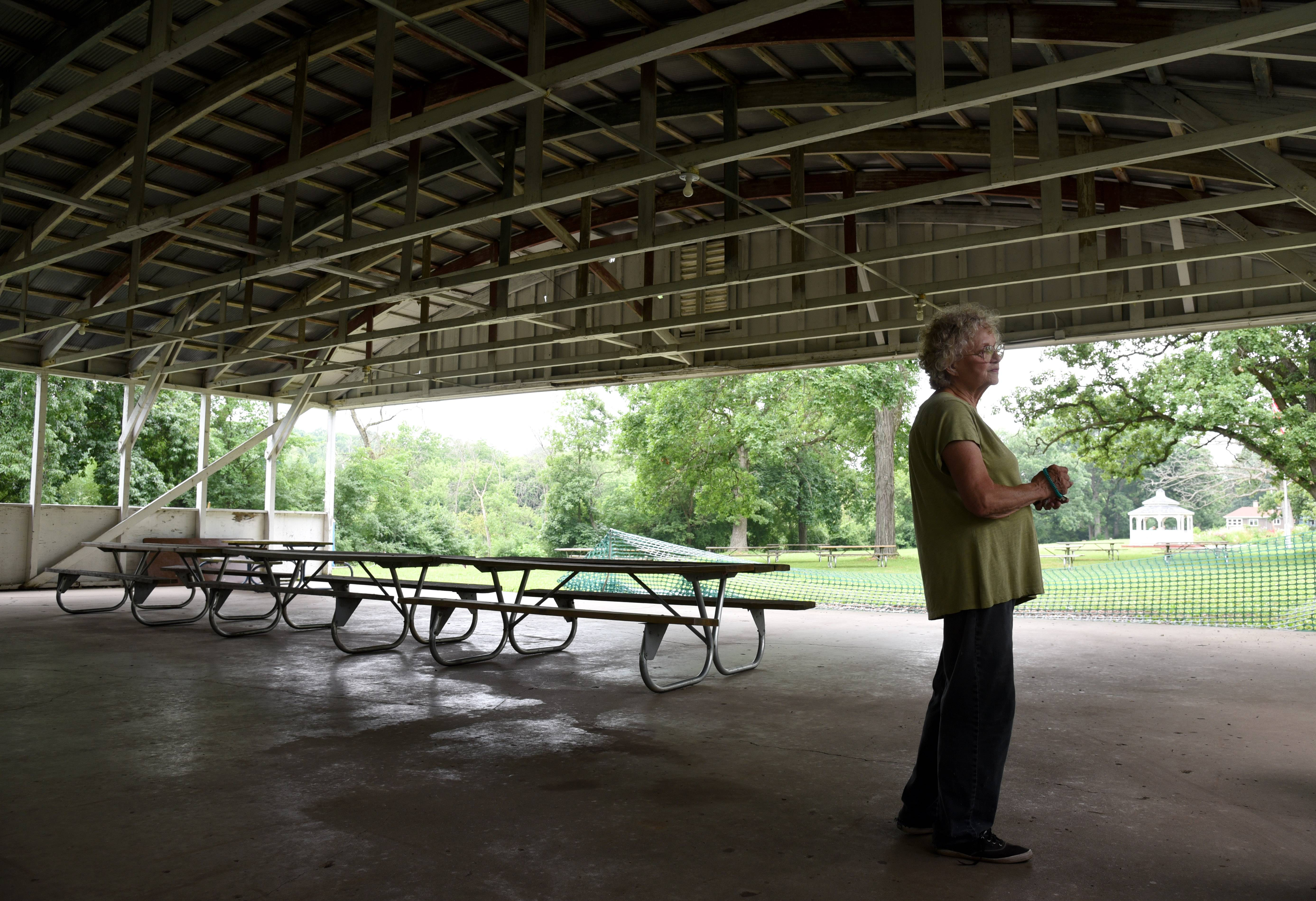 A leaky roof in the pavilion is among repairs needed at Vasa Park in South Elgin.