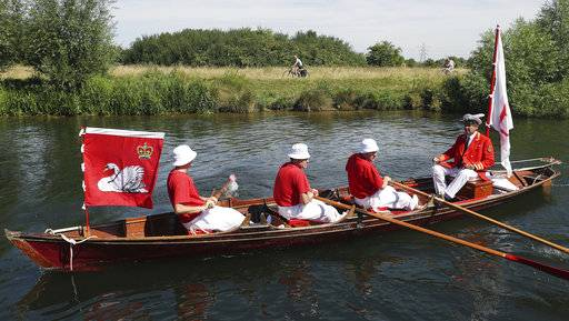 Swan Uppers row near Shepperton Lock, England, as the ancient tradition of counting swans along the River Thames begins, Monday July 17, 2017. The ritual known as Swan Upping dates back to the 12th century when the ownership of all unmarked mute swans in open water in Britain was claimed by the Crown in order to ensure a ready supply for feasts. (Steve Parsons/PA via AP)