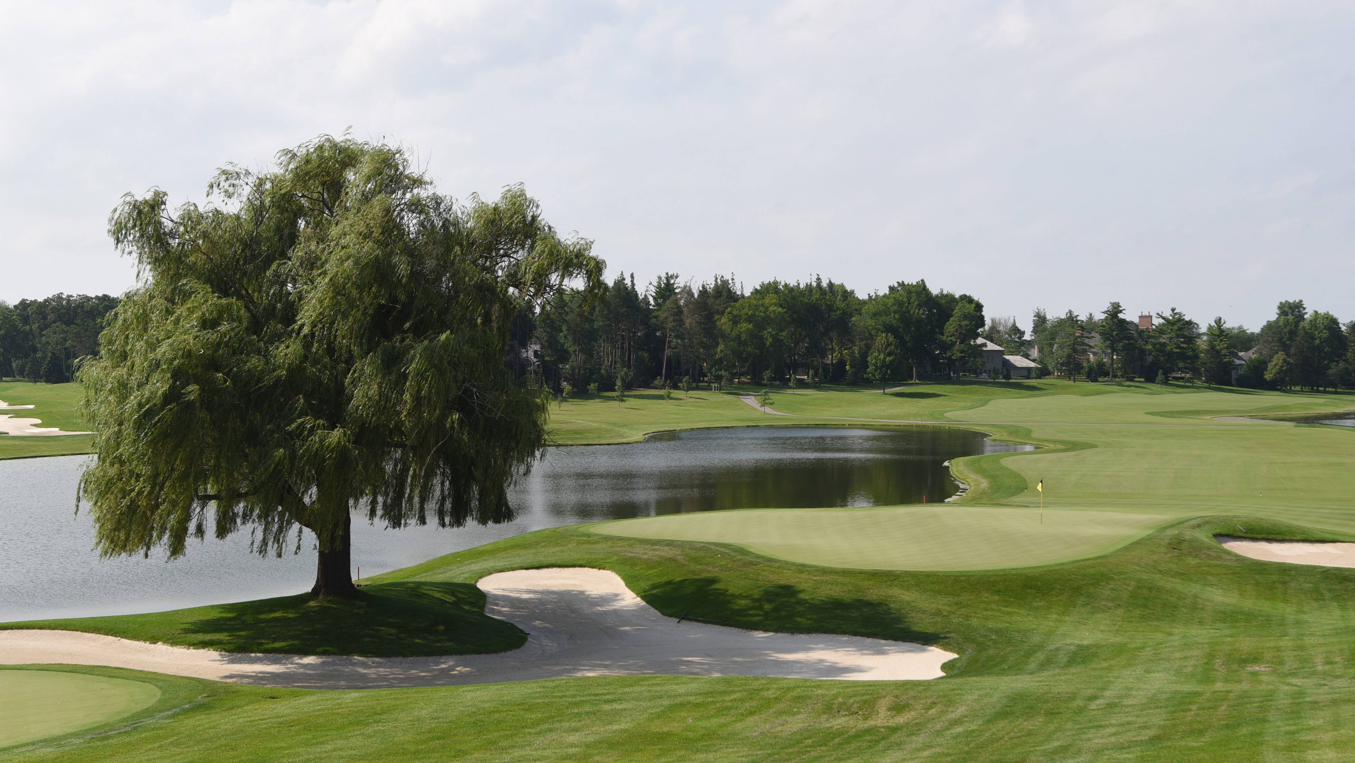 Nine families that bought the Wynstone Golf Club in their North Barrington subdivision intend to prove that they have a formula to make it a success in an era of decline.
