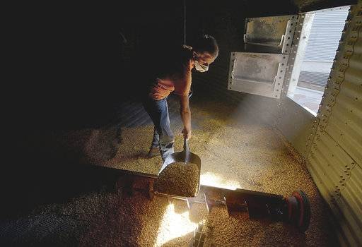 ADVANCE FOR RELEASE SATURDAY, JULY 22, 2017, AT 12:02 A.M. CDT. AND THEREAFTER. In this July 7, 2017 photo, Evan Burbrink, 14, shovels corn into a vent as he and his father, BE N AG, co-owner Brad Burbrink, work together to clean out the grain bin at the farm in southeast Vigo County near Blackhawk, Ind. Nearly every day, two semi-loads of food-grade corn leave the BE N AG Family Farm from southern Vigo County en route to an Azteca milling site in Evansville. Sold under the Mission Brand name, the corn chips can be found at stores such as Walmart. (Joseph C. Garza/The Tribune-Star via AP)