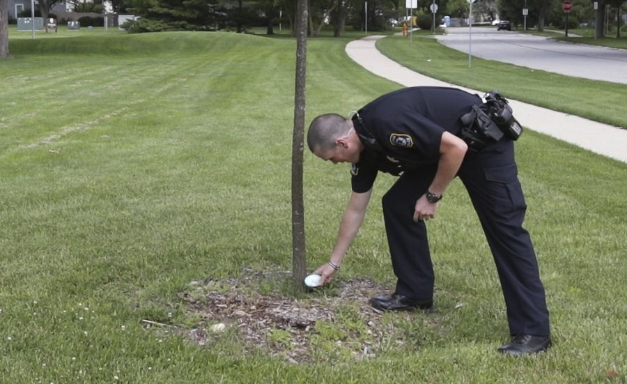 Naperville police officer Danny McNally places a painted Kindness Rock at the foot of a small tree Friday at Wil-O-Way Park.
