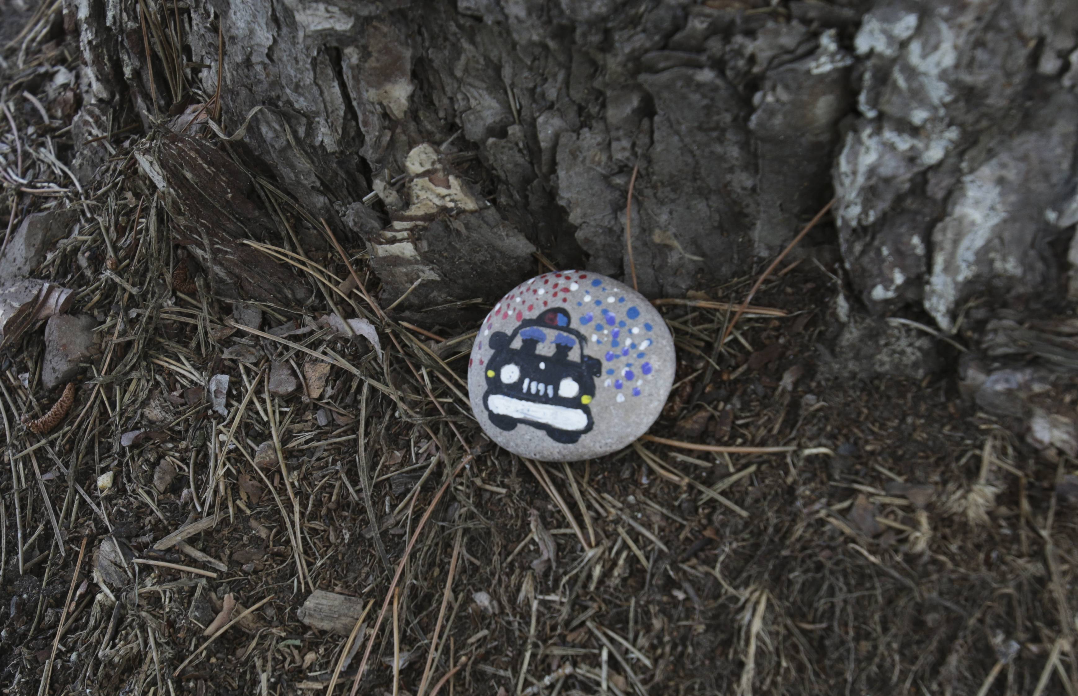 "This Kindness Rock, one of about 50 painted by Naperville Police Department personnel and placed throughout the community Thursday and Friday, shows a squad car on one side and ""Drive Safe Drive Sober"" on the other."