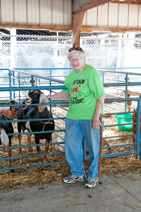 Marilyn Goodrich is the popular goat superintendent in one of the barns at the DuPage County Fairgrounds in Wheaton.