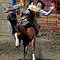 Cowboy hats dominate during Rodeo Day at DuPage County Fair