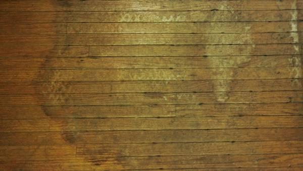 What To Do When Floodwaters Seep Into Hardwood Floors
