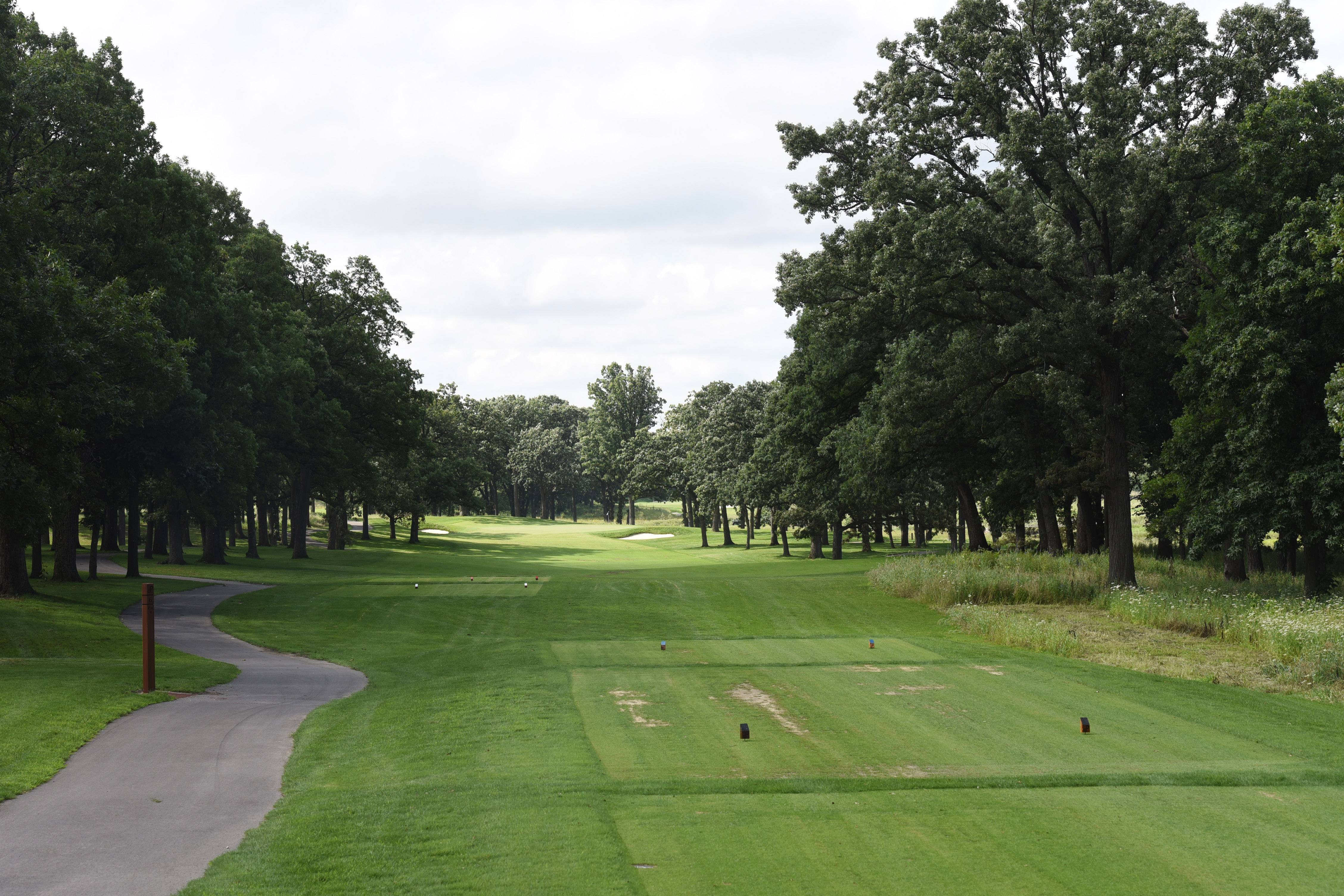 Trees line a fairway at The Preserve at Oak Meadows in Addison. The 18-hole course will open to public play on Aug. 7 and host a grand opening next spring.