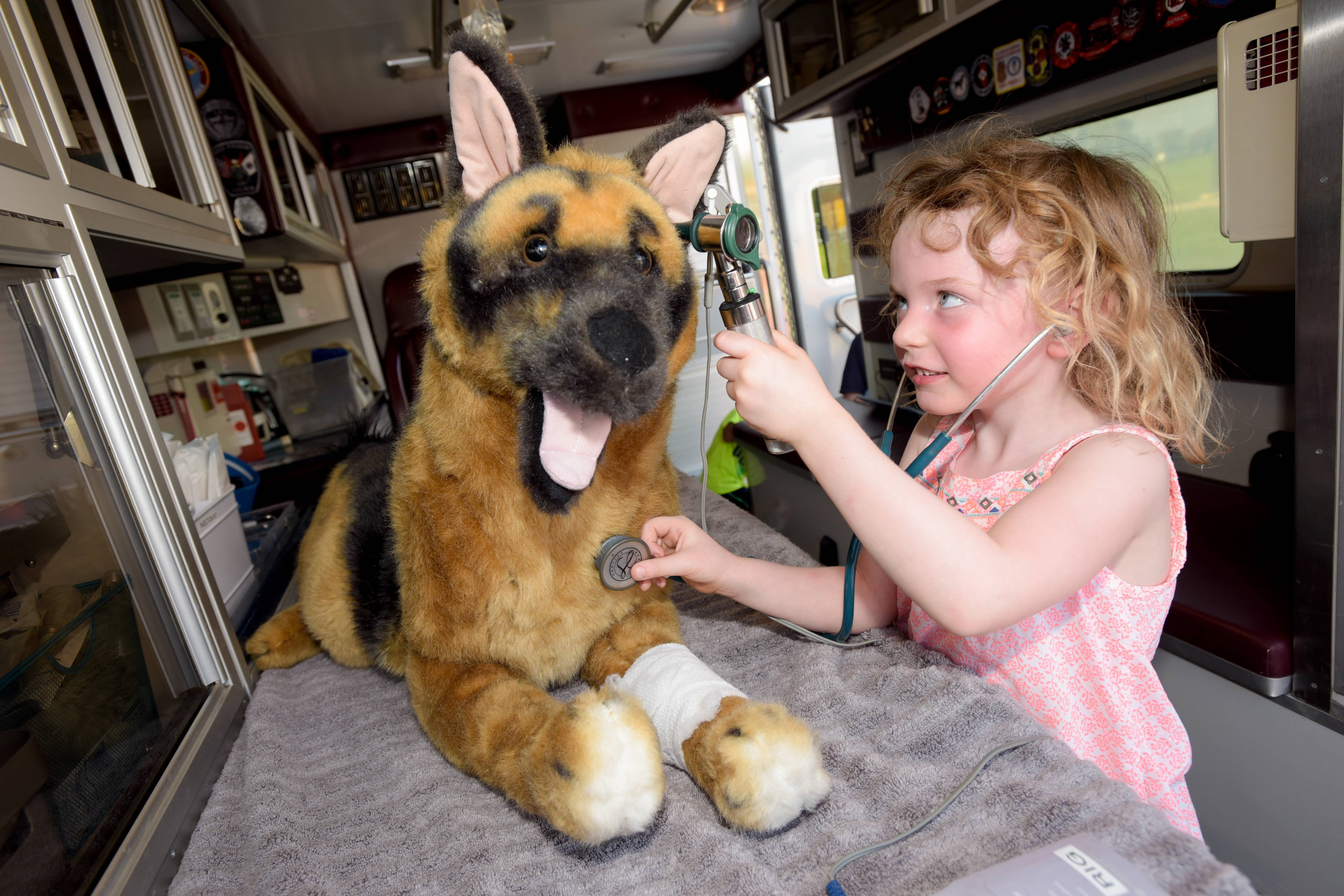 Sophia Conrad, 4 of Naperville gives an examination to a stuffed dog Tuesday in the Partners and Paws Veterinary Services animal ambulance during the National Night Out event at Benedictine University in Lisle.