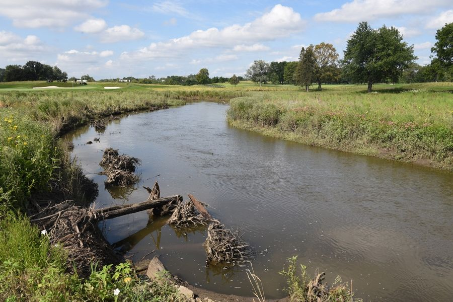 The portion of Salt Creek that runs through The Preserve at Oak Meadows was restored as part of a roughly $16.8 million project to improve the golf course in Addison.