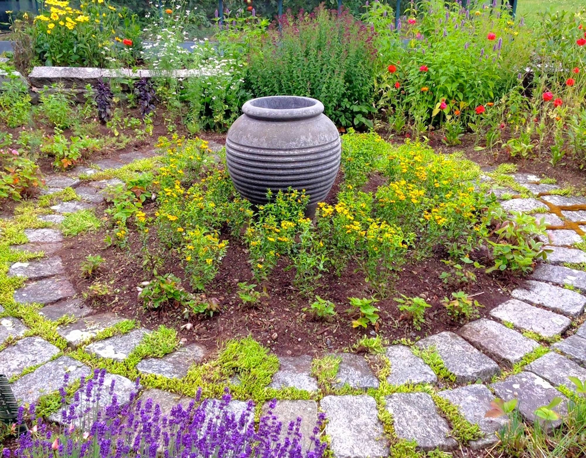 Mexican mint marigolds surround an urn in the author's herb garden. For those who struggle to grow tarragon, the herb makes a good stand-in.