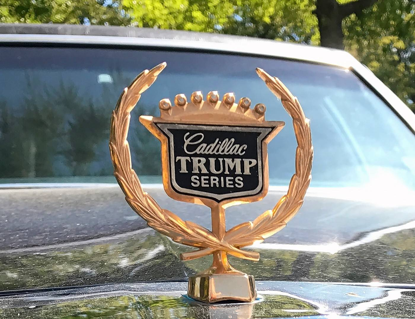 The Volo Auto Museum has purchased a Cadillac limousine that was made for Donald Trump before he became president. The hood ornament indicates its lineage.