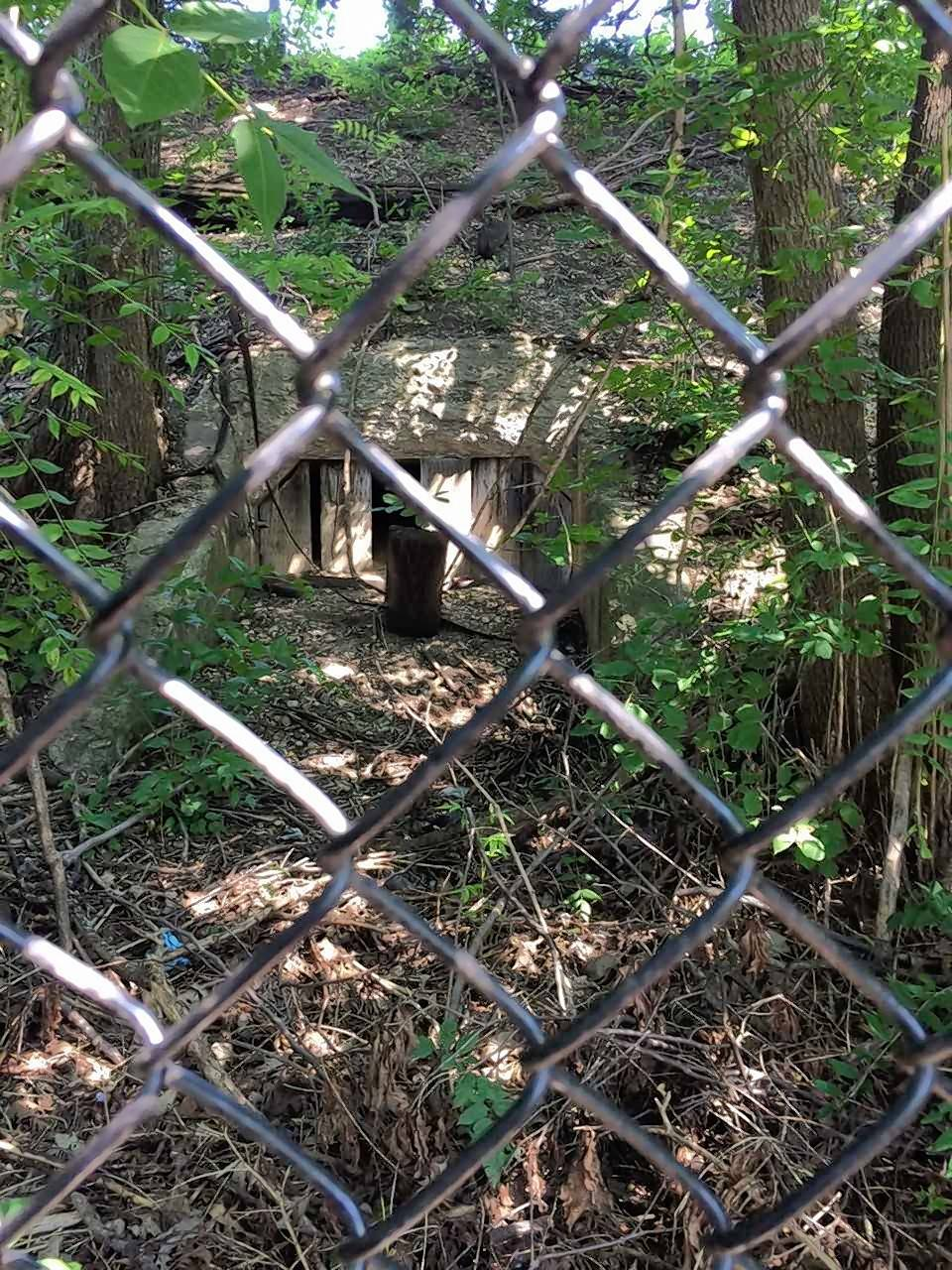 The southern entrance to the cow tunnel a group of Naperville residents is considering reopening is located near a gazebo in the Naperville Station subdivision of row houses just west of the DuPage Children's Museum.