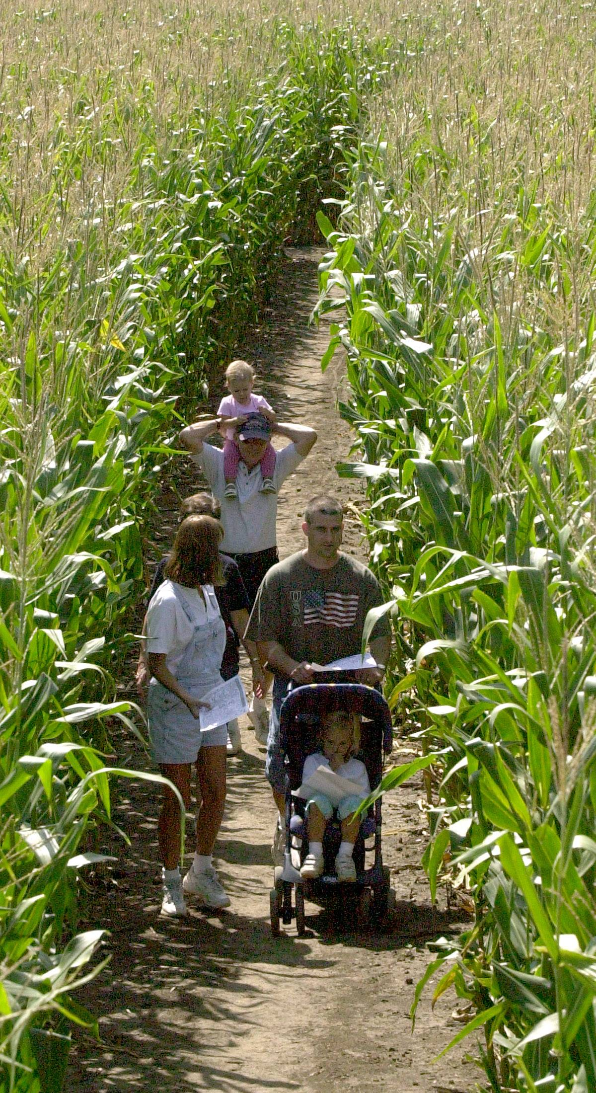 The corn maze at Richardson Farm in Spring Grove is elaborately detailed.
