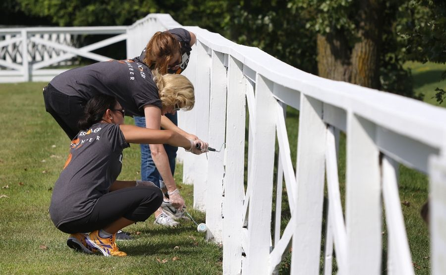 Senior managers Aileen Kleiman of Bannockburn, front, Angela Brown of Algonquin and Emily Pawluk of Mount Prospect paint a fence at Lambs Farm in Libertyville.