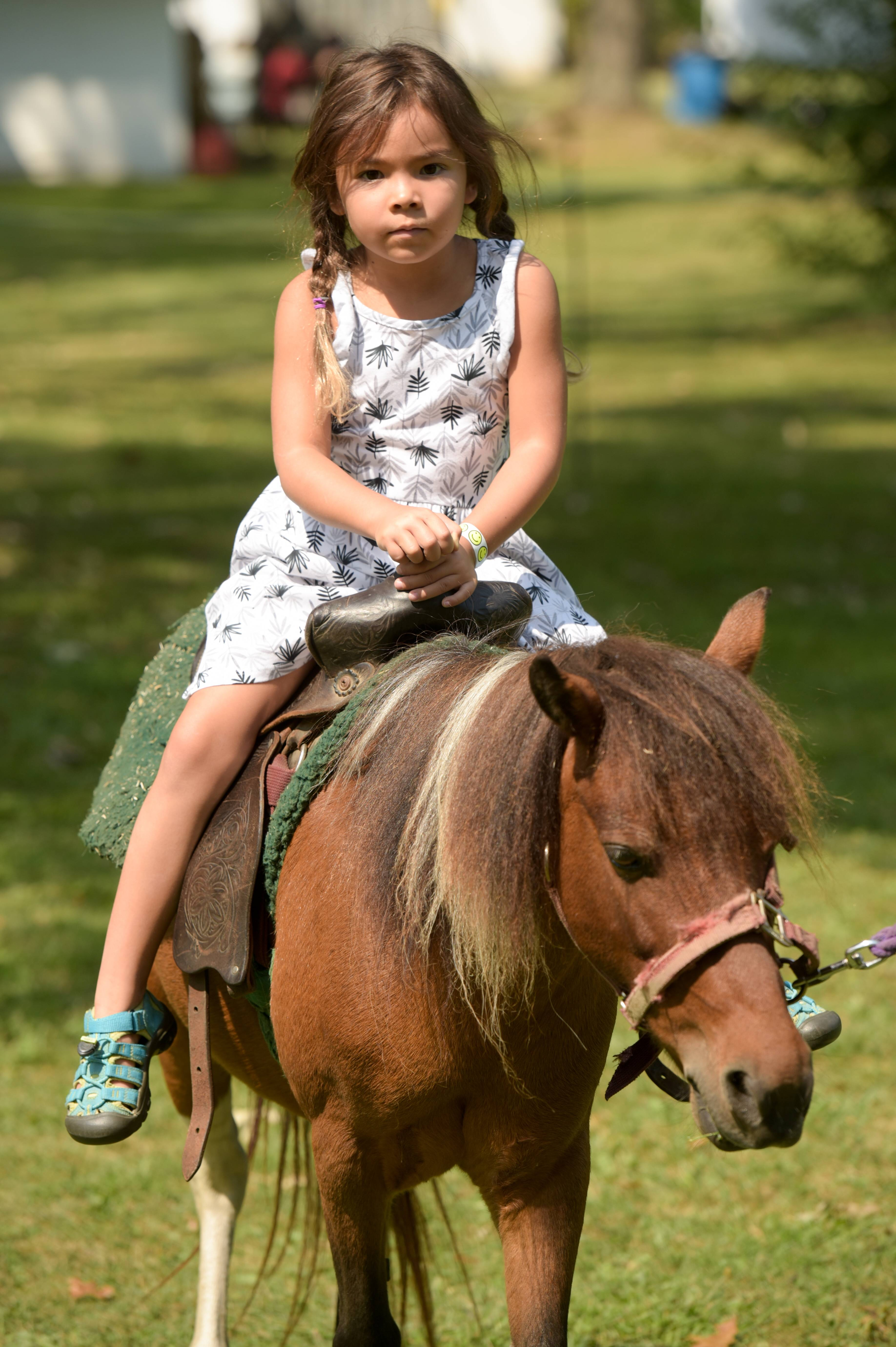 Kylie Schoenknecht, 5, of Elgin rides a pony during the 38th Annual Scandinavian Day Festival Sunday in South Elgin.