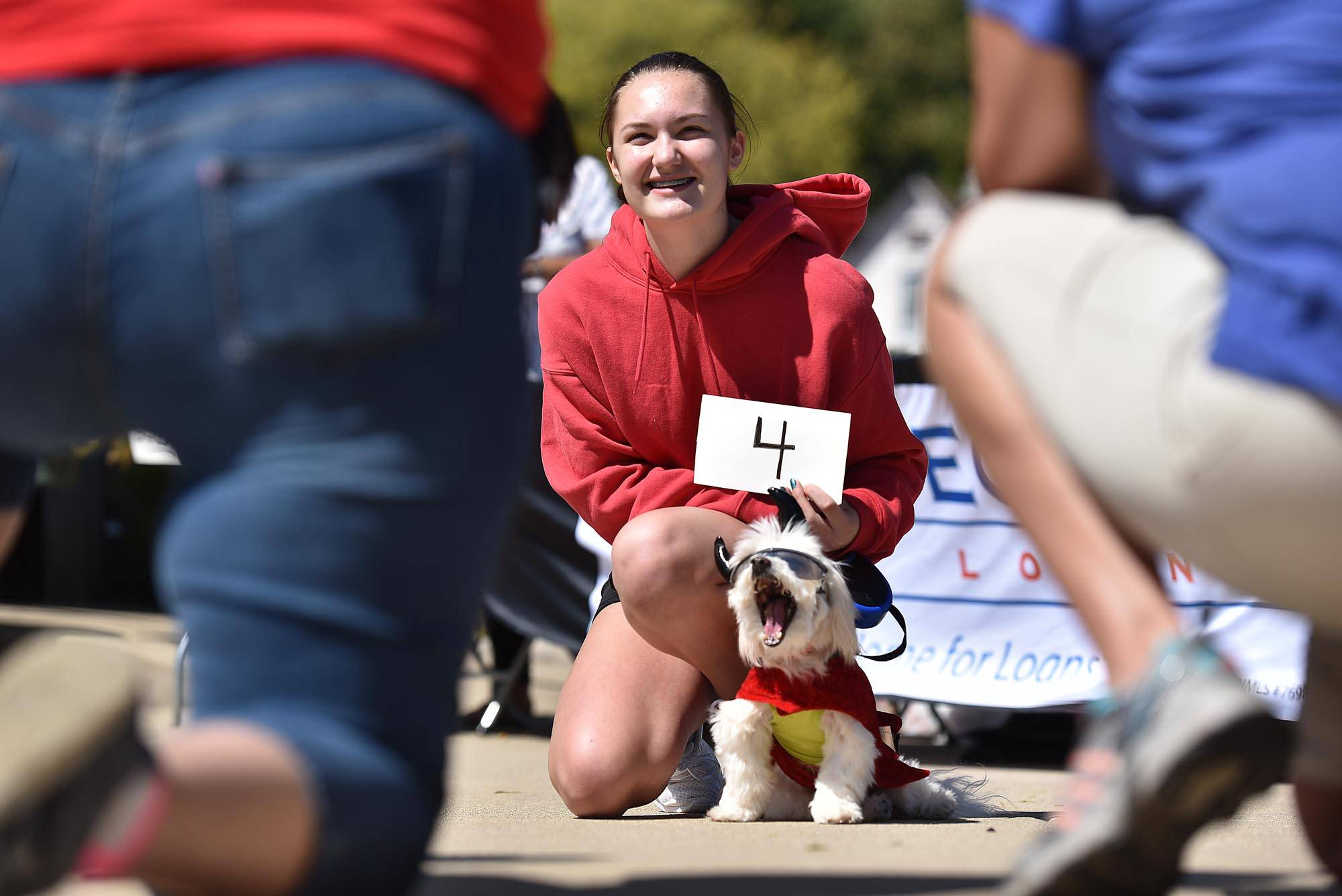 Ho-Beau, a 13-year-old Maltese mix, makes a face as he has his picture taken with Isabella Gucciardo, of Glen Ellyn Saturday at the Algonquin Founder's Day River Relief Benefit at Riverfront Park in Algonquin. The dog won first place in the best costume category of a dog and cat show.