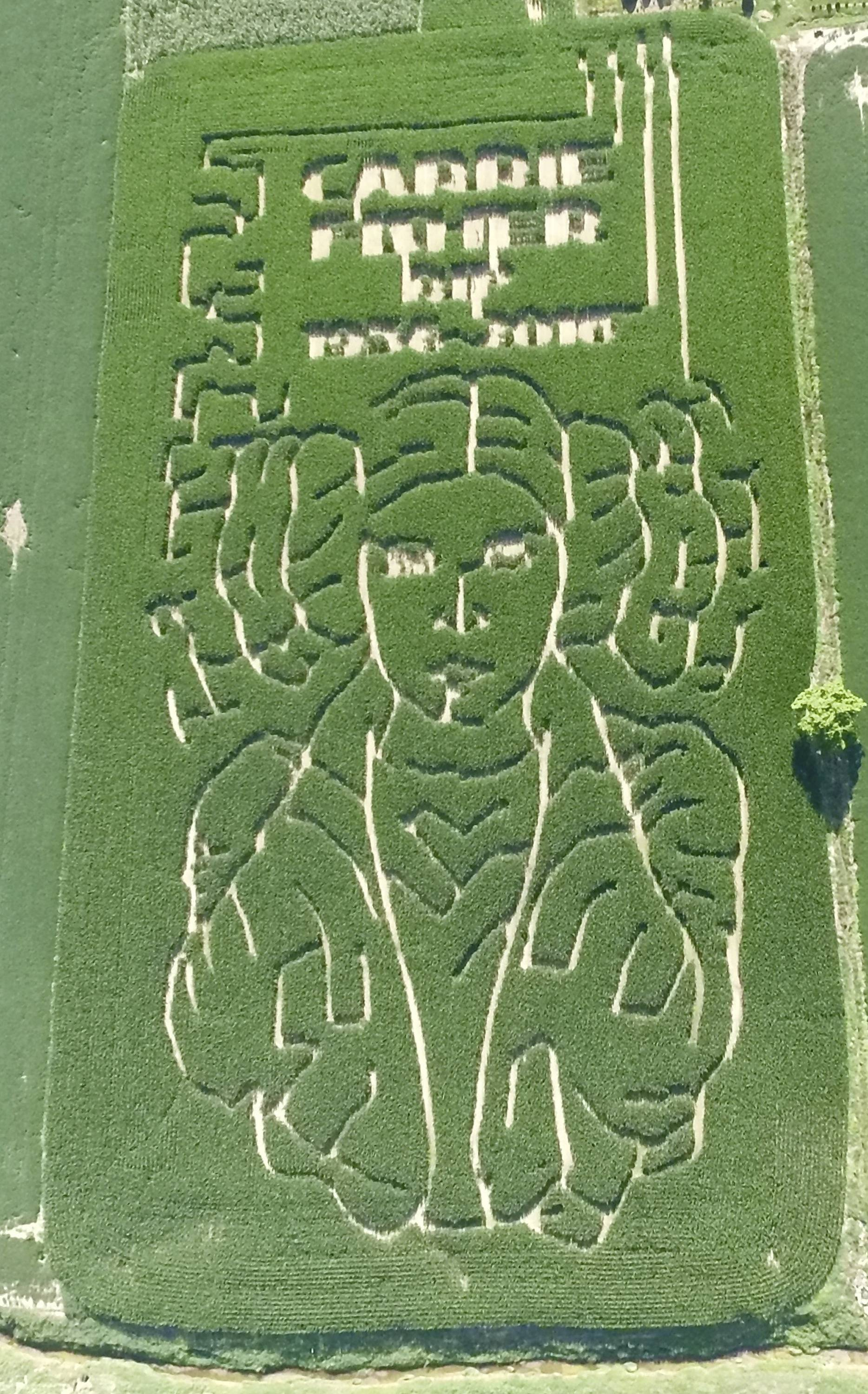 "Jeremy Goebel designed a corn maze with trails outlining the face of ""Star Wars"" character Princess Leia to honor the late actress Carrie Fisher on his farm in Evansville, Ind."