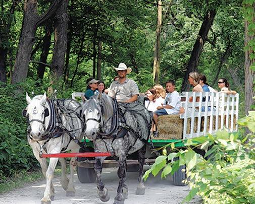 Horse-drawn hayrides are returning to Danada Equestrian Center on select Saturdays and Sundays, Sept. 16 to Nov. 5. The first rides will be available Saturday during Family Day at Danada.