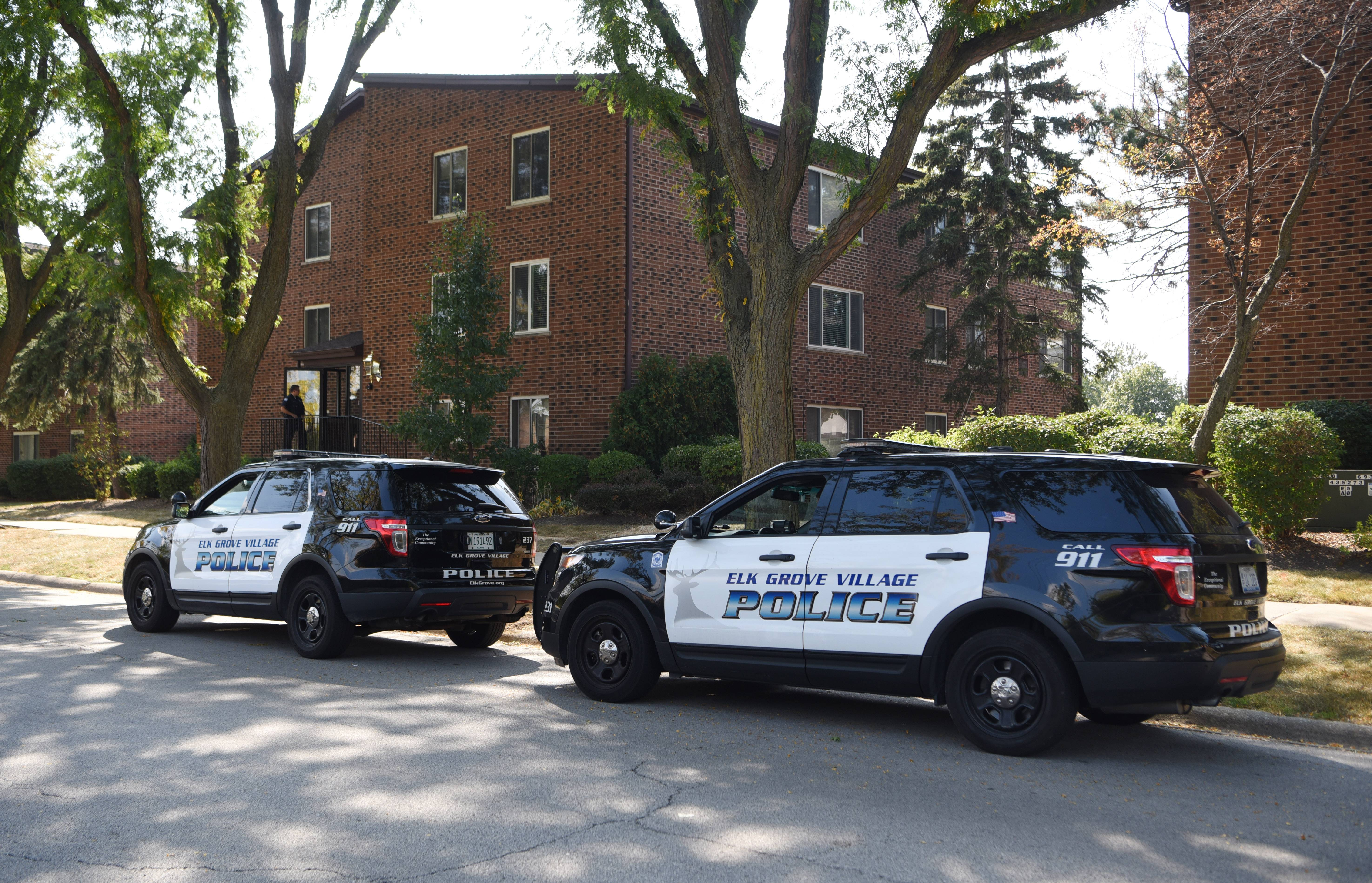 The mother of a 3-year-old boy who lived in the 900 block of Perrie Drive in Elk Grove Village faces first-degree murder charges in her son's death.
