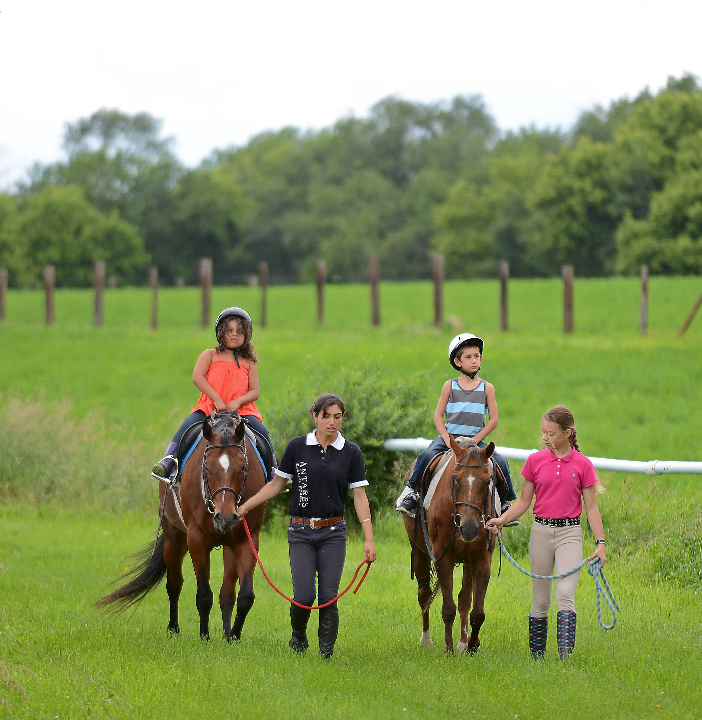 Tower Hill Stables in Hampshire offers guided trail rides that meander through fields, woods and scenic rolling hills just 10 minutes from I-90 and Route 47.