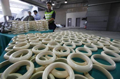 FILE - In this Tuesday Nov. 15, 2011 file photo, customs officers stand guard besides the smuggled ivory bracelets at the Hong Kong Customs and Excise Department in Hong Kong, inside a container shipped to Hong Kong from Cape Town, South Africa. Conservationists say some criminal groups are processing rhino horns into powder and trinkets in South Africa before smuggling it to Asia, a developing trend that could make it harder for law enforcement agencies to intercept trafficked horns. (AP Photo/Kin Cheung, File)