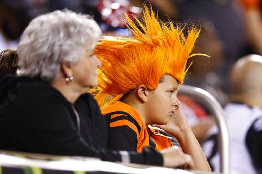 A Cincinnati Bengals fan watches from the stands as the team trails by a point in the second half of an NFL football game against the Houston Texans, Thursday, Sept. 14, 2017, in Cincinnati. (AP Photo/Gary Landers)