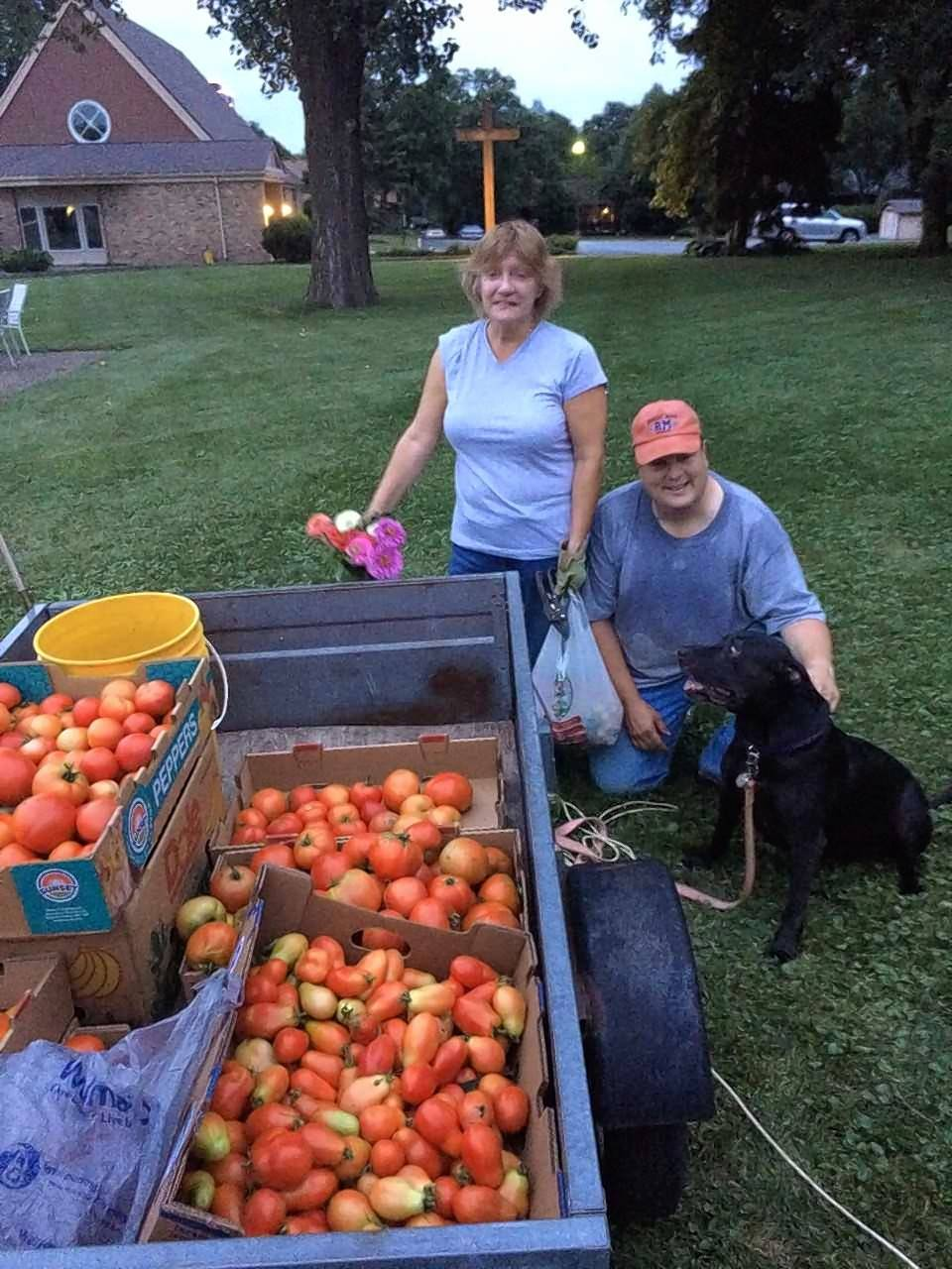 Gardeners B.J. and Kristie Scherer help load some of the harvest from the garden behind the Covenant Church of Schaumburg. Church members turn out every Tuesday night to harvest vegetables, which then are transported on Wednesday to the Schaumburg Township Food Pantry.