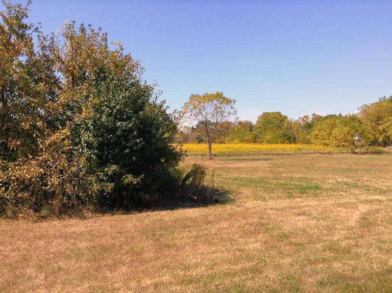 Schaumburg to discuss leasing site to park district