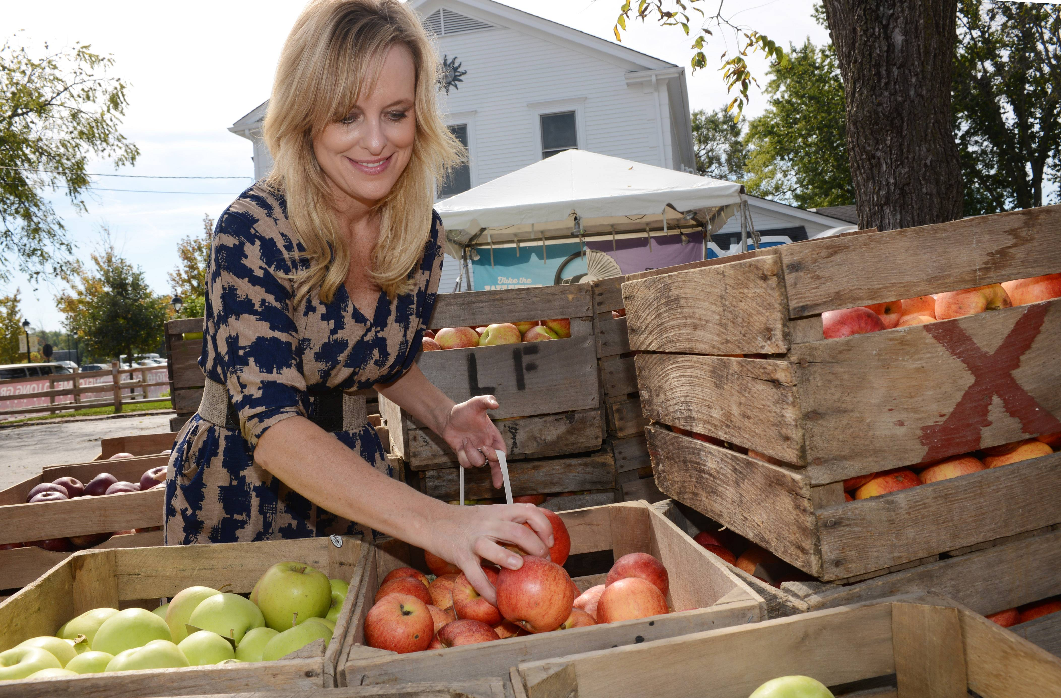 Melissa Bernadette of Long Grove selects apples at the Frank Farms stand during Apple Fest in Long Grove.
