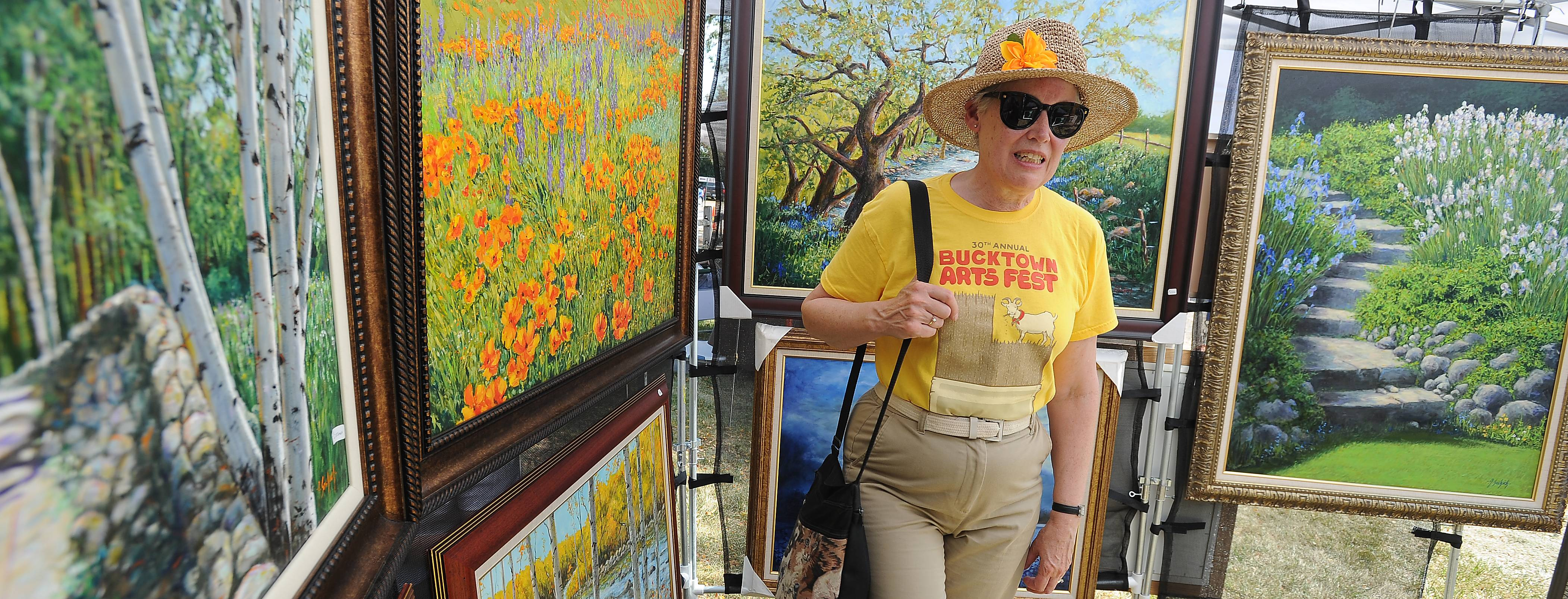 Lisa Dimberg of Evanston admires the oil and acrylic works of Anthony Saskich of Wisconsin at the Art in the Barn festival on Advocate Good Shepherd Hospital grounds in Barrington Sunday.