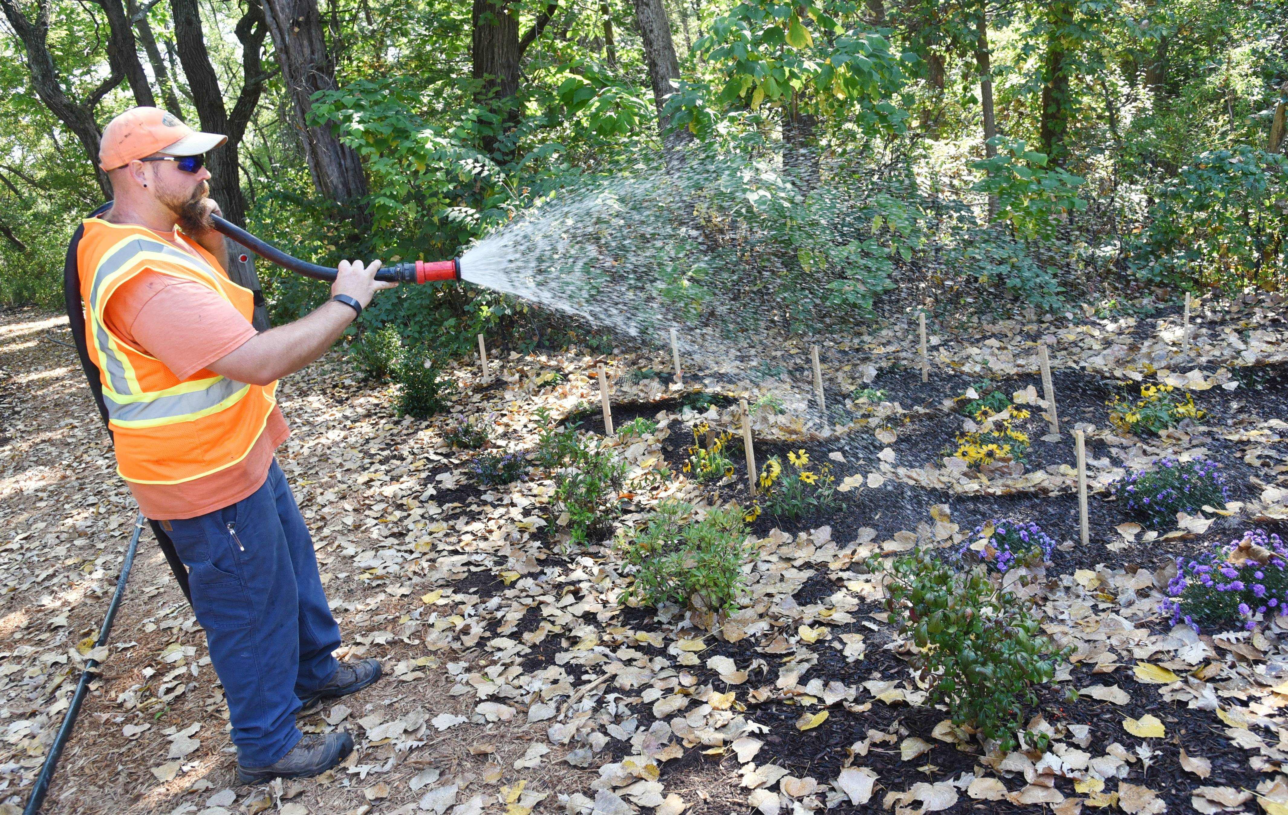 Randy Wendt of the Hawthorn Woods Public Works department waters along one of the Brierwoods Preserve trails Monday.
