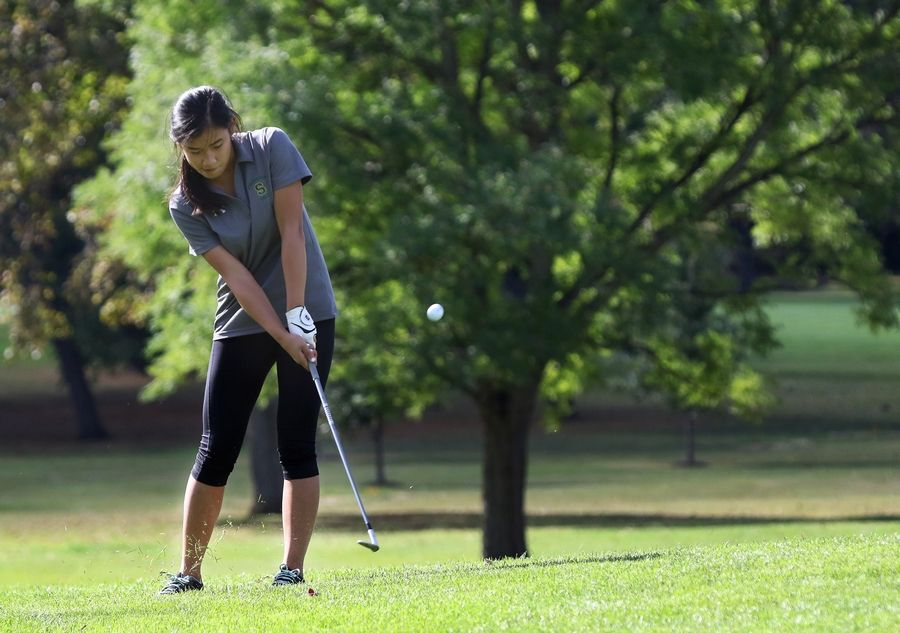 Stevenson's Kelly Dong reaches the green at No. 7 during the North Suburban Conference tournament Wednesday at Bonnie Brook Golf Course in Waukegan.
