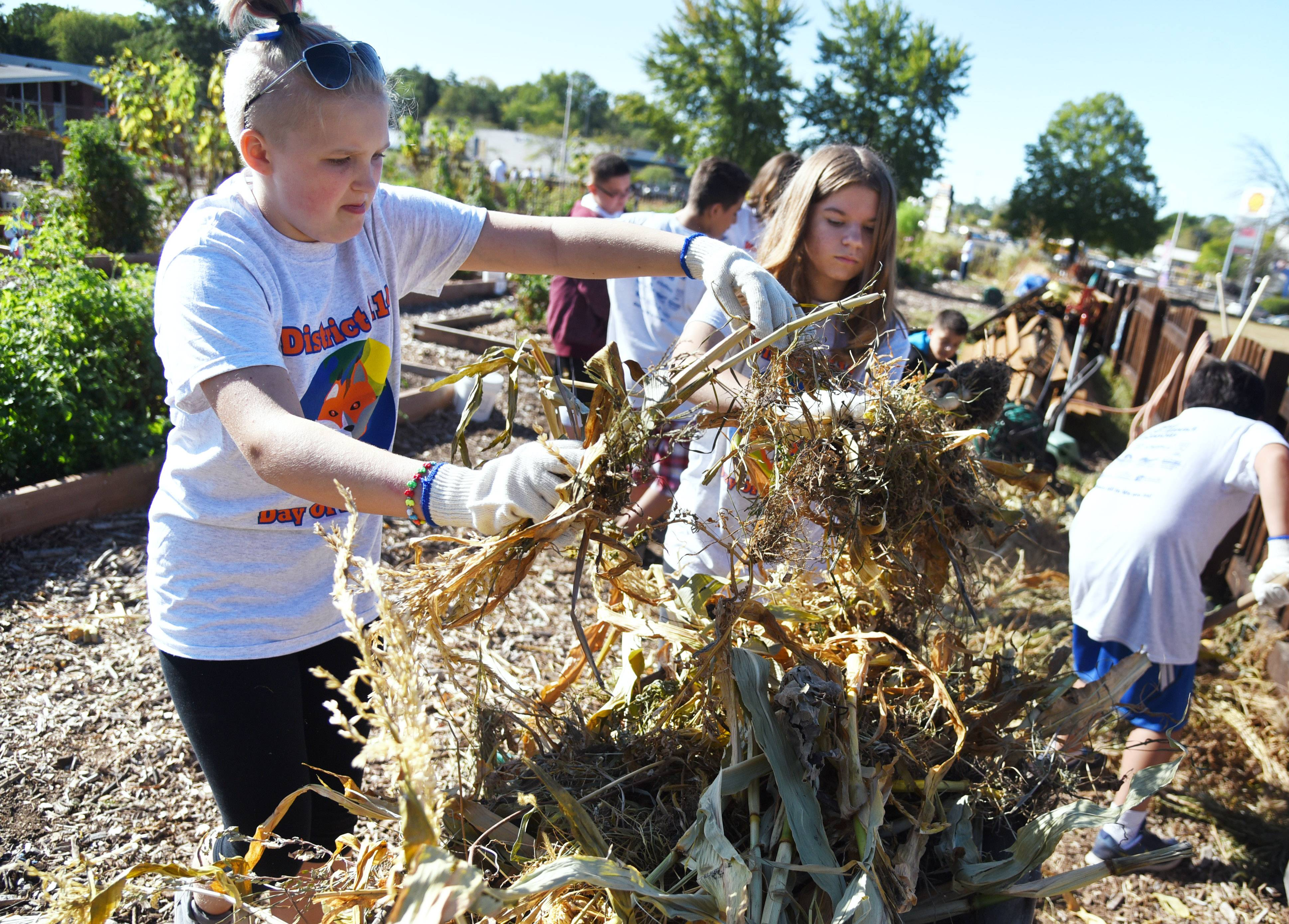 Stanton Middle School students Maddie Watts and Marisa Rosario help clean up debris Friday at the Fox Lake Community Garden. Students from Stanton and Lotus schools were participating in the third annual District 114 Day of Service event.