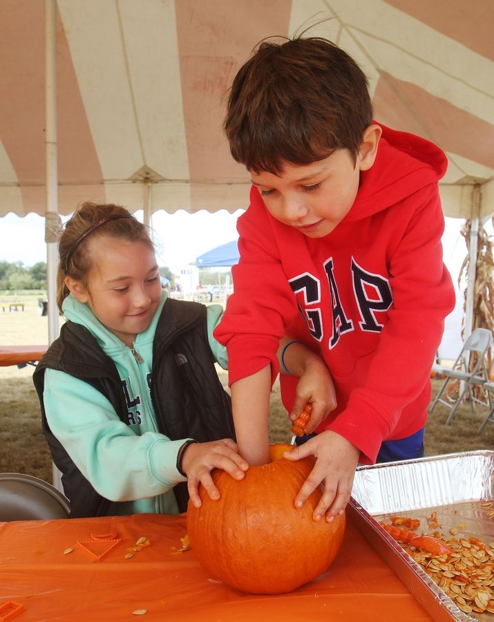 Eloise Hill, 9, of Fox Lake and her brother, Parker, 8, carve a pumpkin for a contest Sunday during the Grant Township Fall Festival.