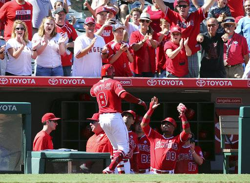 Los Angeles Angels fans and teammates celebrate Eric Young Jr.'s three-RBI home run against the Seattle Mariners in the seventh inning of a baseball game in Anaheim, Calif., Sunday, Oct. 1, 2017.
