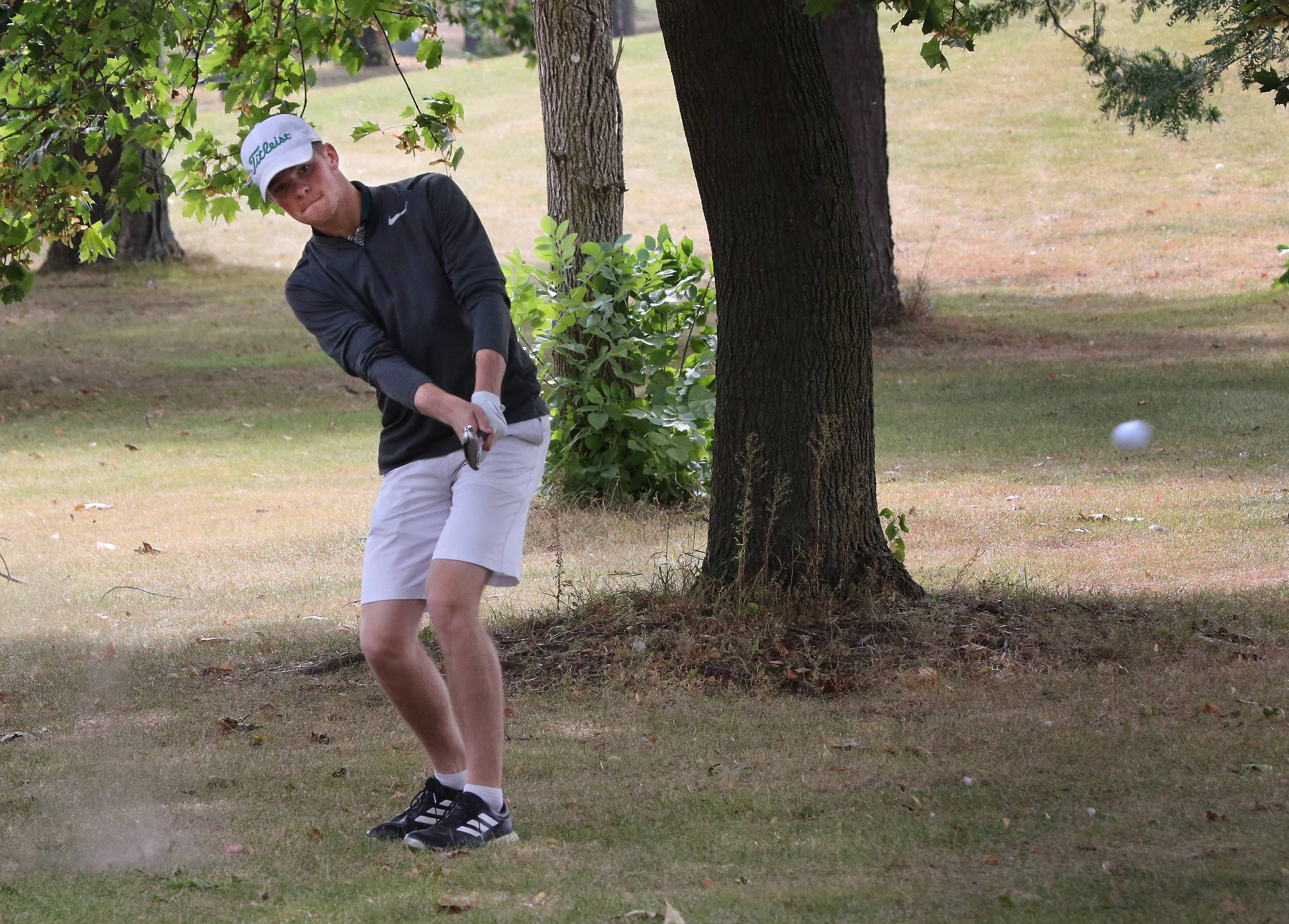 Grayslake Central's Alec Novak hits from underneath a tree on the ninth hole during the boys golf regional Tuesday at Midlane Golf Resort in Wadsworth.
