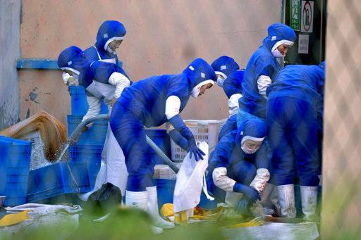 In this Sept. 4, 2017, photo, workers at a seafood processing plant where North Korean workers are distinguished from the Chinese workers by blue overalls wash up after work in the city of Hunchun, in northeastern China's Jilin province. At a time when North Korea faces sanctions on many exports, it sends of tens of thousands of workers worldwide bringing in revenue estimated at anywhere from $200 million to $500 million. That could account for a sizable portion of its nuclear weapons and missile programs, which South Korea says has cost well over $1 billion.