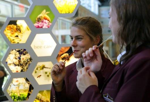 FILE - In this Sept. 15, 2015 file photo, St. Thomas More Academy students Maria Pompi, left, and Megan Boretti, right, sample honey sticks during a tour of the Bayer North American Bee Care Center in Research Triangle Park, N.C. A new study published Thursday, Oct. 5, 2017, in the journal Science found something in the world's honey that is not quite expected or sweet: the controversial pesticides called neonicotinoids. Scientists say it is not near levels that would come close to harming humans, but it is a big worry for bees, which already are in trouble.