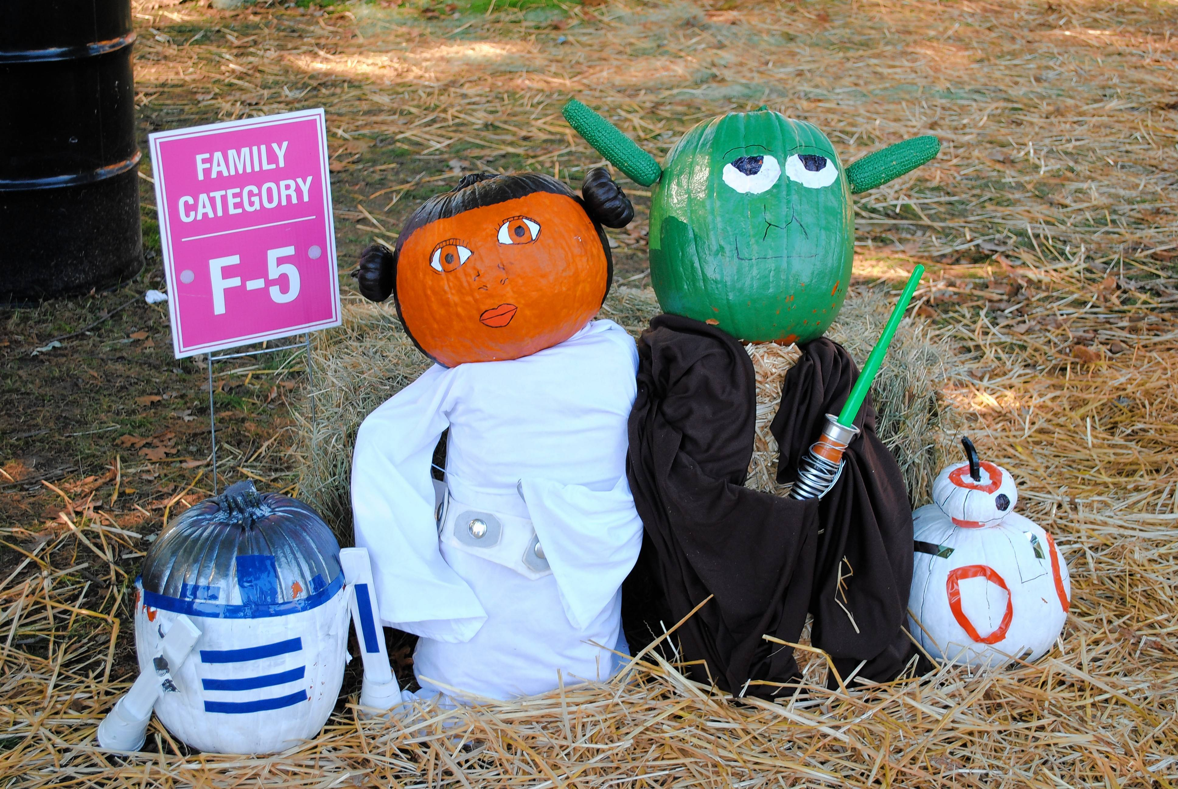 Scarecrows of all kinds are on display at St. Charles' Scarecrow Festival this weekend.