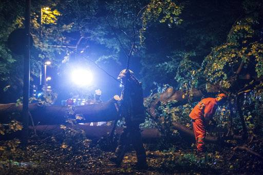 In this Oct. 5, 2017 photo firefighters remove uprooted trees in Hannover, Germany. Seven people died Thursday as high winds knocked over trees and caused widespread travel chaos in northern Germany.  (Silas Stein/dpa via AP)