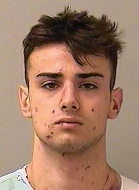 Geneva man, 19, charged with reckless homicide in fatal crash