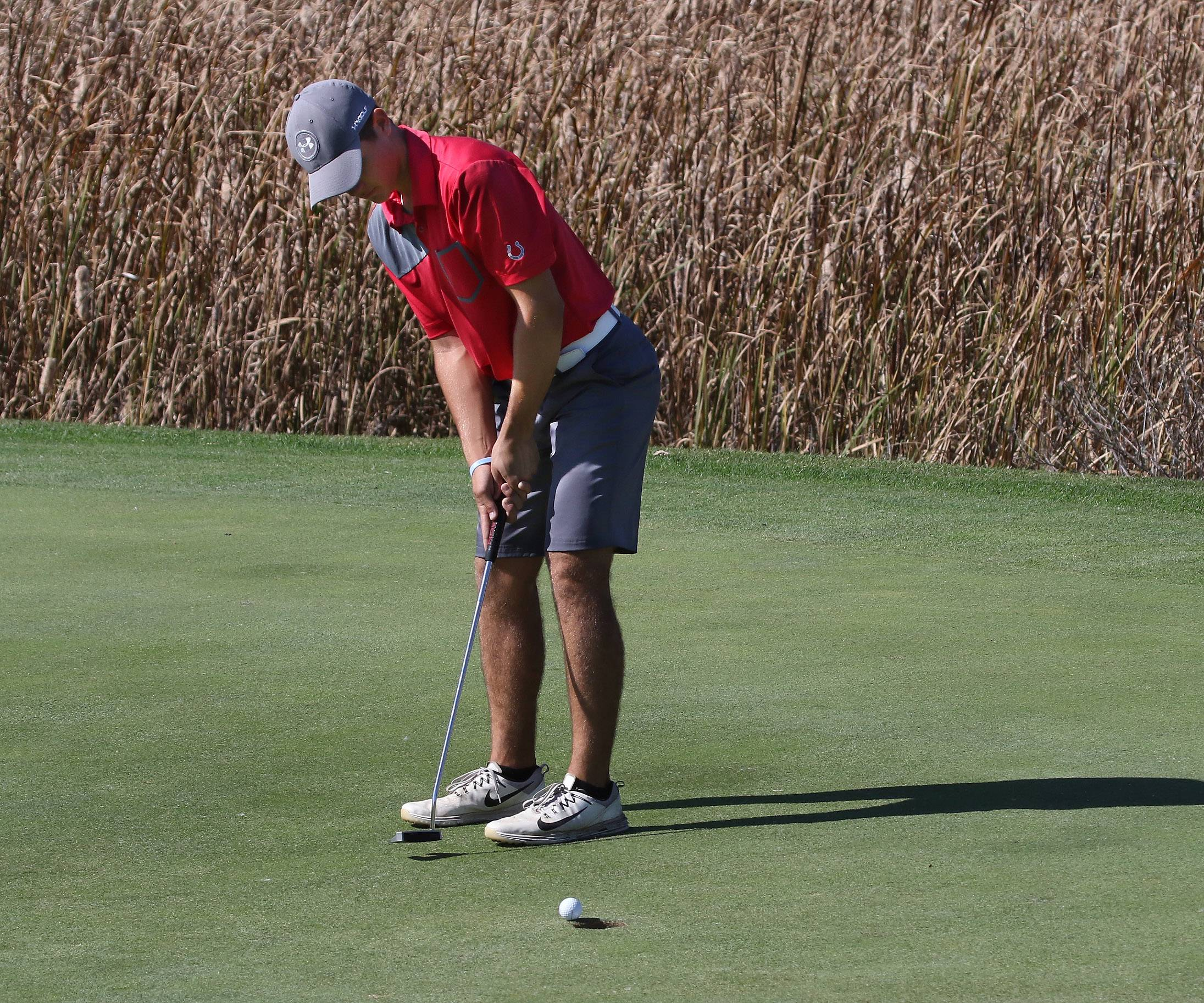 Mundelein's Josh Peterson putts on the second hole during the Class 3A Warren boys golf sectional on Monday at Bittersweet Golf Club in Gurnee.